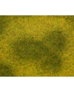 PREMIUM Landschaps-segment, Wei, lichtgroen 180488