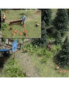 Busch varens en paddestoelen 1203