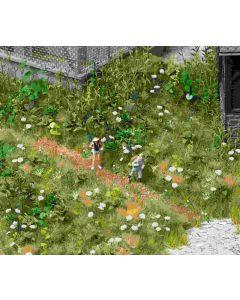 Busch verwilderde tuin 1227