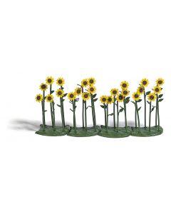 Busch zonnebloemen k-kl.24 st.(7/15) * 1240