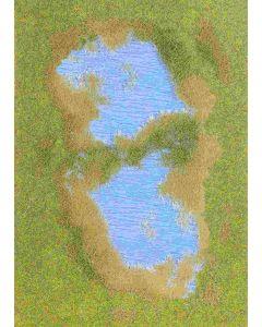 Busch bodembedekk.: meer met oever 1312