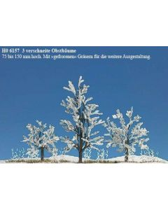 Busch winter fruitbomen 3st. 6157